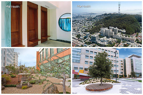 Collage of UCSF Health Zoom backgrounds
